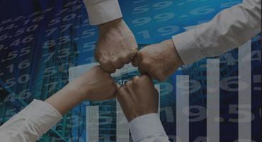 Financial Advising / Share Brokers